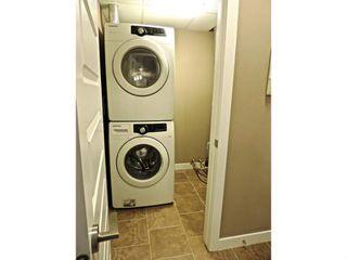 Photo 14: # 109 8730 82 AV NW in EDMONTON: Zone 18 Condo for sale (Edmonton)  : MLS®# E3387104