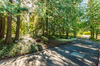 Photo 5: 697 Viel Road in Sorrento: WATERFRONT House for sale : MLS®# 10155772