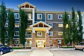 Photo 34: 102 CRANBERRY PA SE in Calgary: Cranston Condo for sale