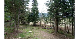 Photo 6: 7206 Fraser Crescent: Anglemont Vacant Land for sale (North Shuswap)  : MLS®# 10182685
