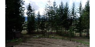 Photo 7: 7206 Fraser Crescent: Anglemont Vacant Land for sale (North Shuswap)  : MLS®# 10182685
