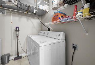 Photo 21: 209 9811 96A Street in Edmonton: Zone 18 Condo for sale : MLS®# E4192019