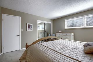 Photo 32: 55 BAY VIEW Drive SW in Calgary: Bayview Detached for sale : MLS®# A1018086