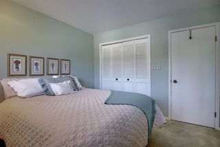 Photo 30: 55 BAY VIEW Drive SW in Calgary: Bayview Detached for sale : MLS®# A1018086