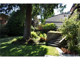 Photo 8: 3973 Lexington Ave in VICTORIA: SE Arbutus Single Family Detached for sale (Saanich East)  : MLS®# 618143