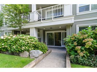 """Photo 17: 101 6420 194TH Street in Surrey: Clayton Condo for sale in """"Waterstone"""" (Cloverdale)  : MLS®# F1321755"""