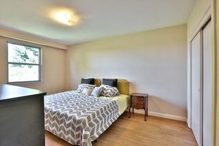 Photo 3: 126 Baycrest Ave in Toronto: Englemount-Lawrence Freehold for sale (Toronto C04)  : MLS®# C3610679