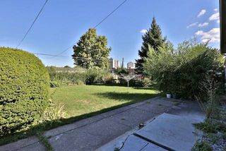 Photo 8: 126 Baycrest Ave in Toronto: Englemount-Lawrence Freehold for sale (Toronto C04)  : MLS®# C3610679