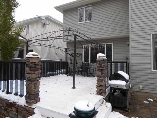 Photo 25: 934 HOPE WY NW in Edmonton: Zone 58 House for sale : MLS®# E4041259