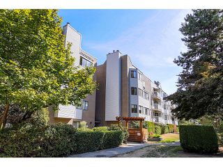 Photo 1: # 101 9584 MANCHESTER DR in Burnaby: Cariboo Condo for sale (Burnaby North)  : MLS®# V1137047