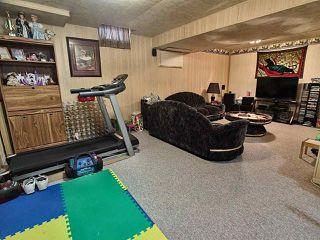 Photo 19: 8616 25A Avenue in Edmonton: Zone 29 House for sale : MLS®# E4168571