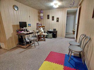 Photo 20: 8616 25A Avenue in Edmonton: Zone 29 House for sale : MLS®# E4168571
