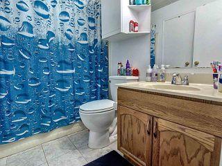 Photo 14: 8616 25A Avenue in Edmonton: Zone 29 House for sale : MLS®# E4168571