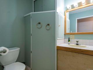 Photo 23: 2561 Webdon Rd in COURTENAY: CV Courtenay West House for sale (Comox Valley)  : MLS®# 822132