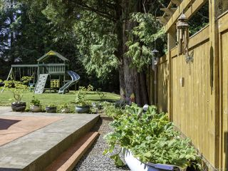 Photo 34: 2561 Webdon Rd in COURTENAY: CV Courtenay West House for sale (Comox Valley)  : MLS®# 822132