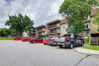 Photo 31: 78D 231 HERITAGE Drive SE in Calgary: Acadia Apartment for sale : MLS®# C4305999