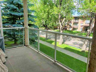 Photo 20: 212 10308 114 Street in Edmonton: Zone 12 Condo for sale : MLS®# E4205172
