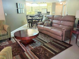 Photo 4: 212 10308 114 Street in Edmonton: Zone 12 Condo for sale : MLS®# E4205172
