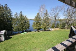 Photo 8: 45 North Taylor Road in Kawartha Lakes: Rural Eldon House (Bungalow-Raised) for sale : MLS®# X4825870