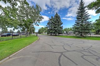 Photo 25: 504 22 Avenue NE in Calgary: Winston Heights/Mountview Detached for sale : MLS®# A1013457