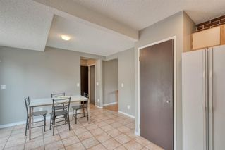 Photo 11: 41 Edgeford Road NW in Calgary: Edgemont Detached for sale : MLS®# A1025189