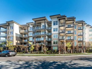 Photo 6: 302 22577 ROYAL Crescent in Maple Ridge: East Central Condo for sale : MLS®# R2502404