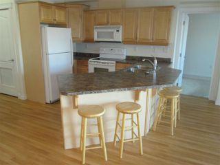 Photo 12: 460 2750 55 Street in Edmonton: Zone 29 Condo for sale : MLS®# E4223780