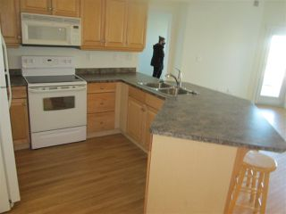 Photo 15: 460 2750 55 Street in Edmonton: Zone 29 Condo for sale : MLS®# E4223780