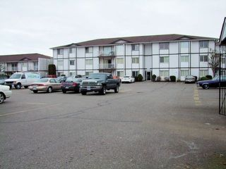 Photo 1: # 320 45669 MCINTOSH DR in Chilliwack: Chilliwack W Young-Well Condo for sale : MLS®# H1400381