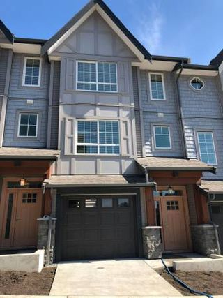 Main Photo: 38 23539 Gilker Hill Road in Maple Ridge: Townhouse for rent