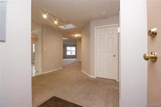 Photo 21: 402 1593 Begbie St in VICTORIA: Vi Fernwood Condo for sale (Victoria)  : MLS®# 827512