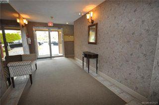 Photo 29: 402 1593 Begbie St in VICTORIA: Vi Fernwood Condo for sale (Victoria)  : MLS®# 827512