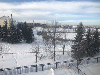 Photo 22:  in Edmonton: Zone 53 House for sale : MLS®# E4181659