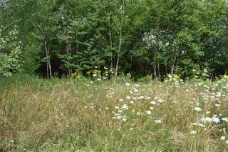 Photo 2: Lot Hillcrest Drive in Conway: 401-Digby County Vacant Land for sale (Annapolis Valley)  : MLS®# 202015536