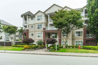 "Main Photo: 302 8068 120A Street in Surrey: Queen Mary Park Surrey Condo for sale in ""Melrose Place"" : MLS®# R2497749"
