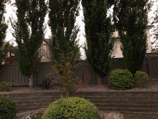 Photo 36: 21 50 Oakridge Drive: St. Albert House Half Duplex for sale : MLS®# E4216056