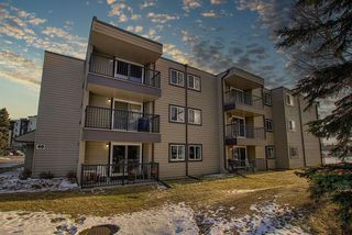 Photo 3: 305 40 Glenbrook Crescent: Cochrane Apartment for sale : MLS®# A1052145