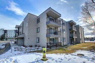 Photo 2: 305 40 Glenbrook Crescent: Cochrane Apartment for sale : MLS®# A1052145