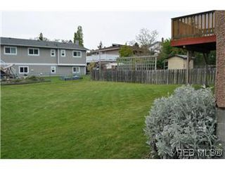 Photo 14: 3246 Doncaster Dr in VICTORIA: SE Cedar Hill House for sale (Saanich East)  : MLS®# 605619