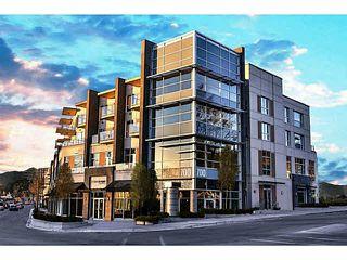 Main Photo: 302 317 Bewicke Avenue in North Vancouver: Hamilton Condo for sale : MLS®# V1112342