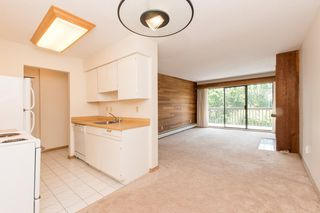 Photo 7: 309 265 E 15TH AVENUE in Vancouver: Mount Pleasant VE Condo for sale (Vancouver East)  : MLS®# R2092544