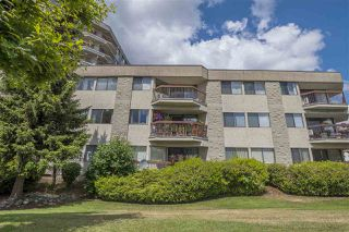 Photo 7: 211 31955 OLD YALE ROAD in Abbotsford: Abbotsford West Condo for sale : MLS®# R2274586