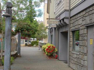 Photo 3: 203 1695 Comox Ave in COMOX: CV Comox (Town of) Condo for sale (Comox Valley)  : MLS®# 836667