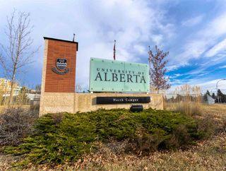 Photo 21: 10839 76 Avenue in Edmonton: Zone 15 House for sale : MLS®# E4220333