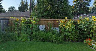 Photo 28: 14444 110 Avenue in Edmonton: Zone 21 House for sale : MLS®# E4224829
