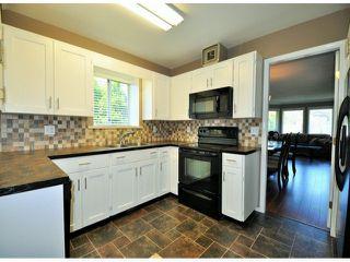 Photo 4: 1636 AGASSIZ-ROSEDALE Highway: Agassiz House for sale : MLS®# H1402985