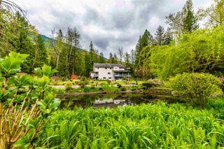 Photo 18: 41917 MAPLE Lane in Yarrow: Majuba Hill House for sale : MLS®# R2452170
