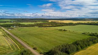 Photo 36: 12240 GOLATA CREEK Road in Fort St. John: Fort St. John - Rural E 100th House for sale (Fort St. John (Zone 60))  : MLS®# R2490395