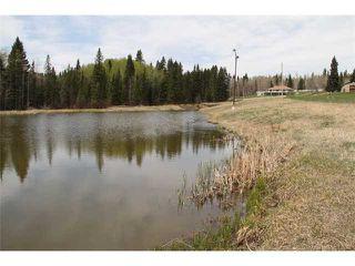 Photo 20: 182 AV W in PRIDDIS: Rural Foothills M.D. Residential Detached Single Family for sale : MLS®# C3522946