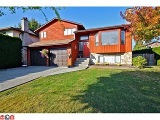 Photo 1: 21255 94B Avenue in Langley: Walnut Grove House for sale : MLS®# F1224518